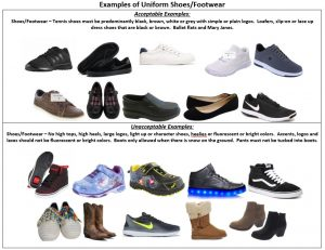 Examples of Shoes-Footwear