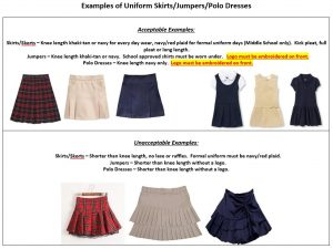 Examples of Skirts-Dresses